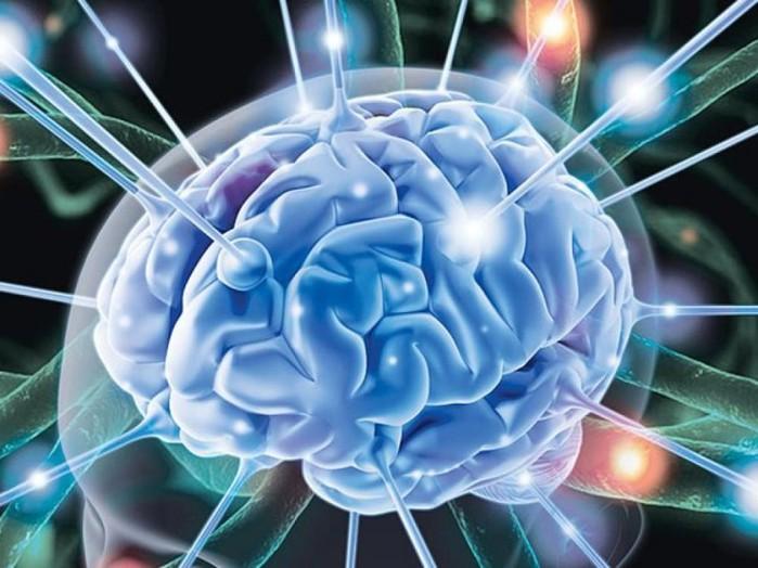 10 откровений о нашем мозге